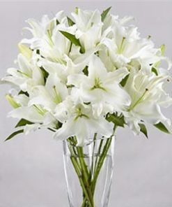 White lilies arrangement