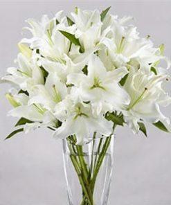 White lilies arrangement