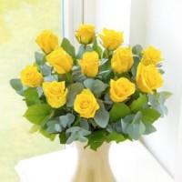 all-yellow-roses-dozen