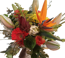 Exotic floral arrangement